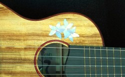 Plumeria Flowers Inlay