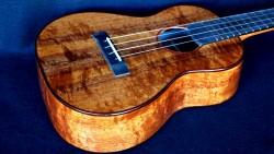 curly, quilty koa tenor ukulele