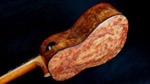 camphor wood burl tenor an attack on the senses ukulele
