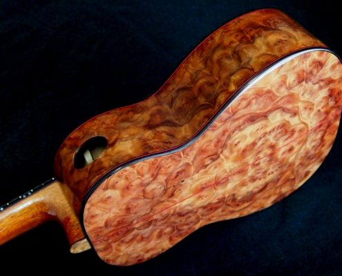 camphor wood burl tenor an attack on the senses ukulele