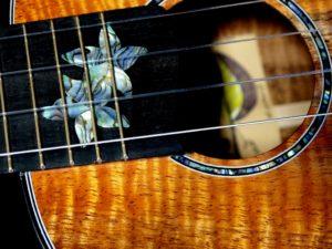 blue plumeria koa concert ukulele