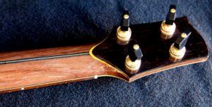 firefly myrtle baritone ukulele