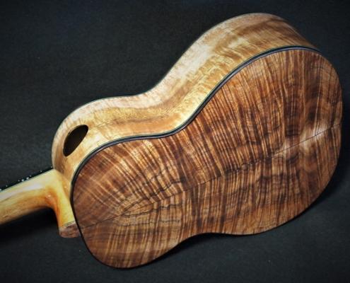 a new hula hips tenor ukulele