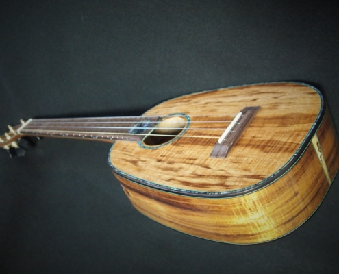 paua moontenor pineapple ukulele
