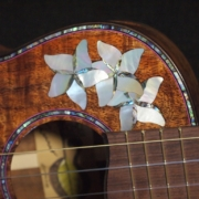 the zoey custom tenor ukulele