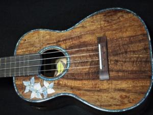 the donna tenor ukulele