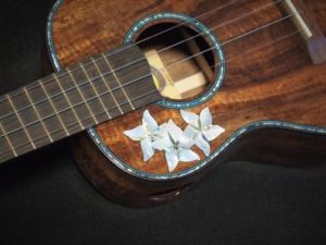 the donna tenor ukulele