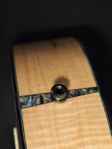 ric's new super tenor ukulele