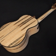 ric's new super tenor ukulele