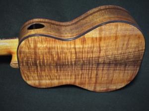 plumeria and koa concert ukulele