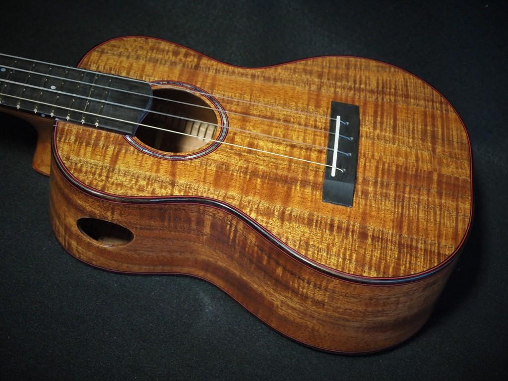 tasmanian blackwood ukulele