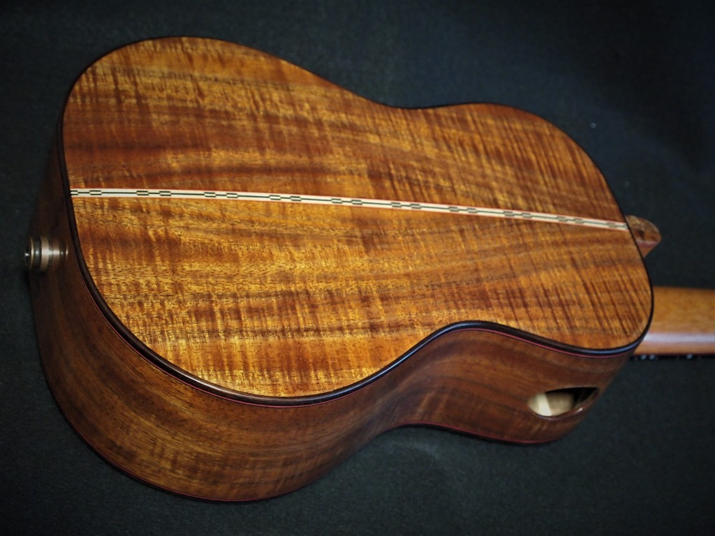 Tasmanian Blackwood beautiful