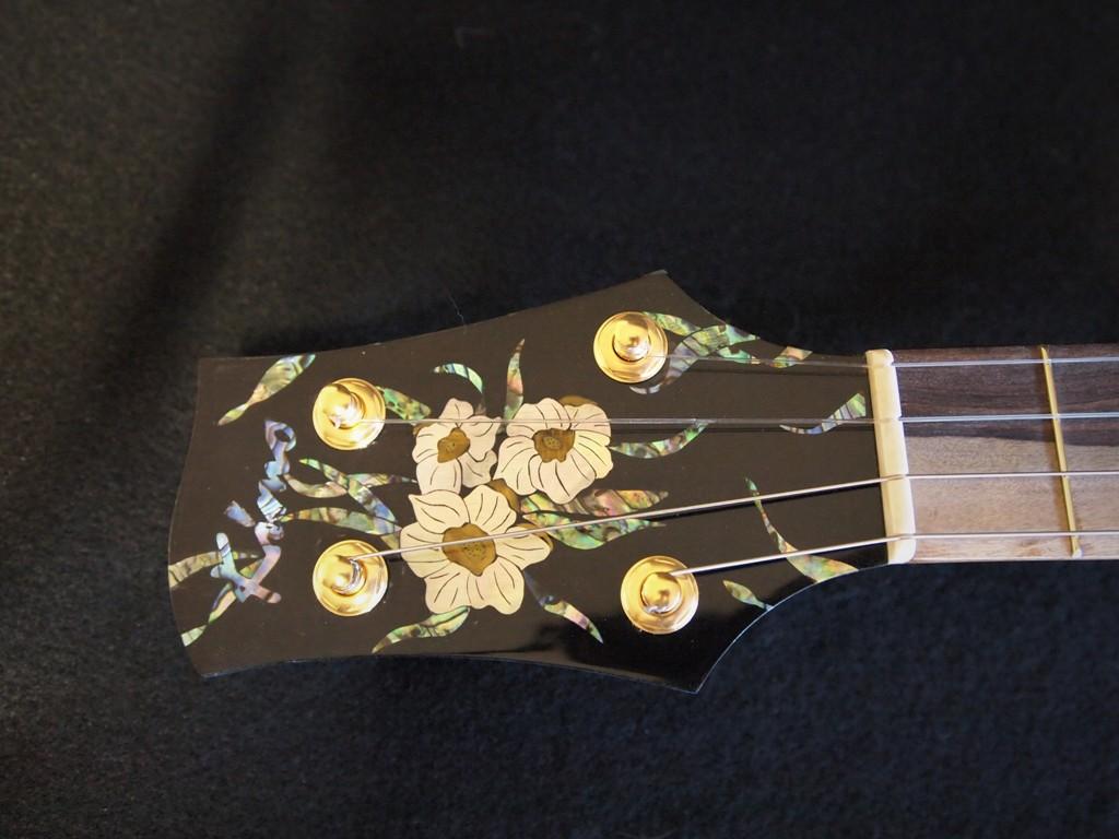 carol's music box baritone ukulele