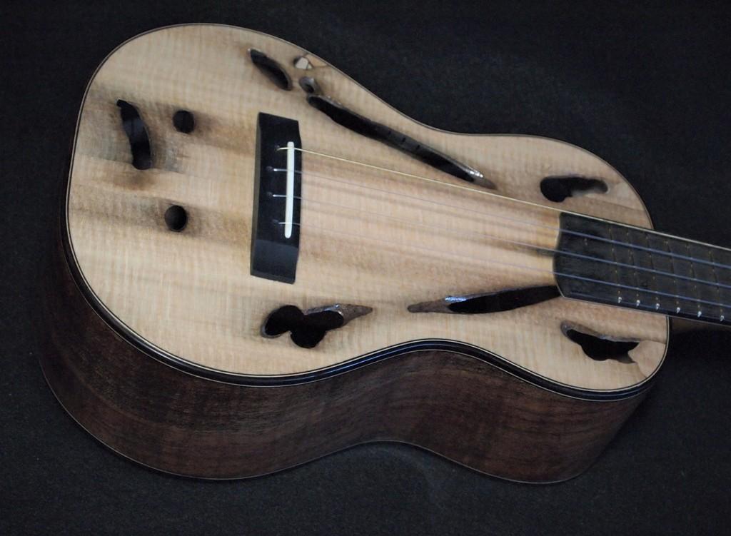 teredo worm concert ukulele