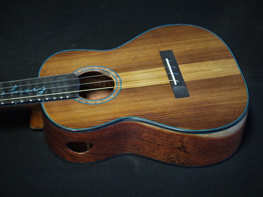 2020 ukuleles in review