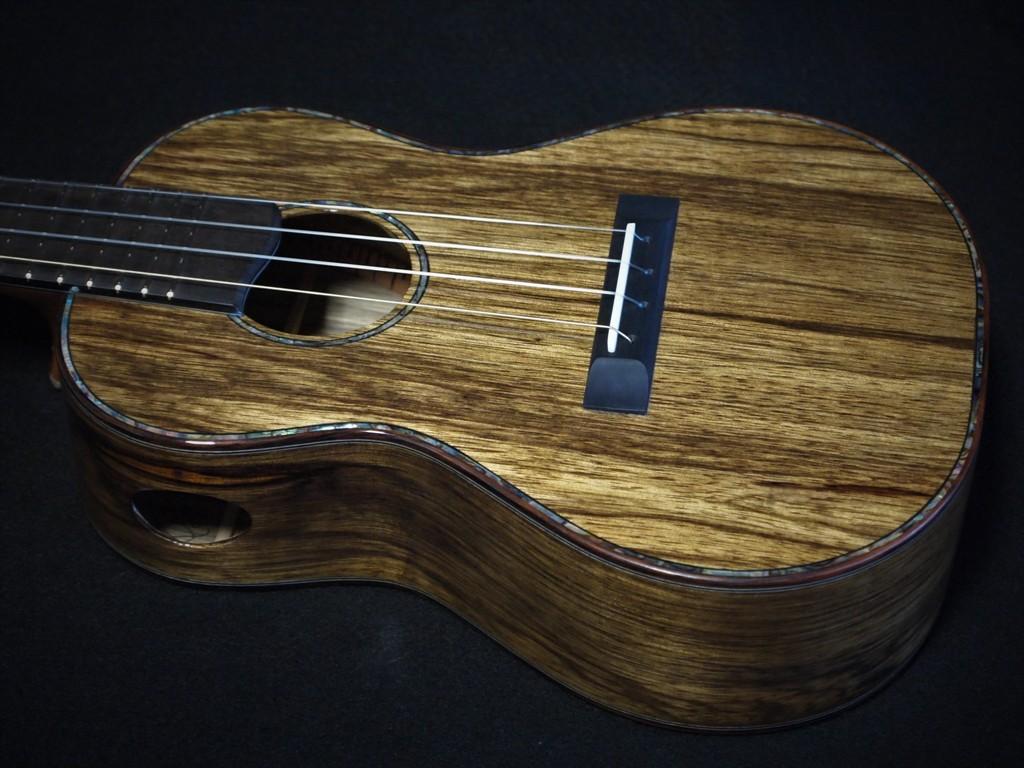 last ukulele 2020