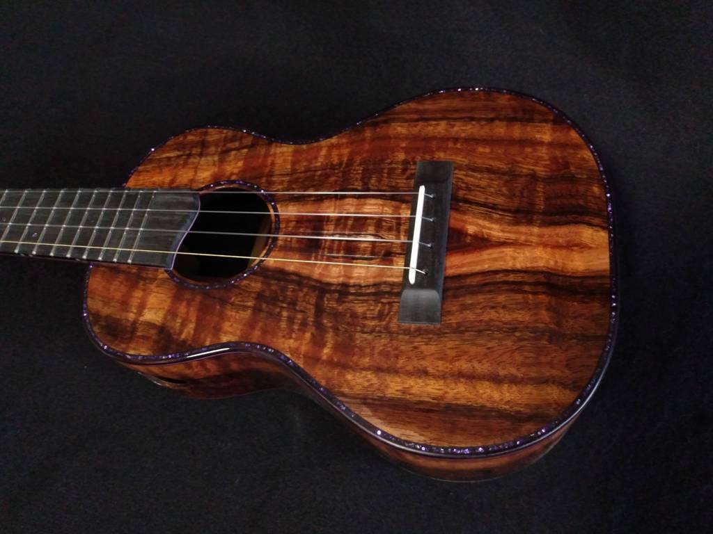 dark star concert ukulele