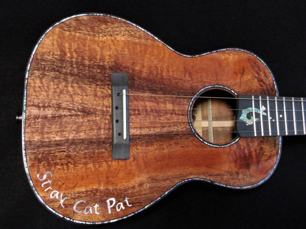 stray cat special ukulele